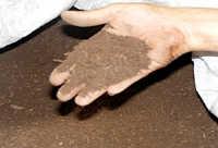 完熟堆肥の完成